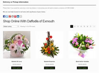 Daffodils Example 2 E-commerce Shopping Cart