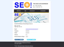 The SEO UK Business Example 5 Custom Email